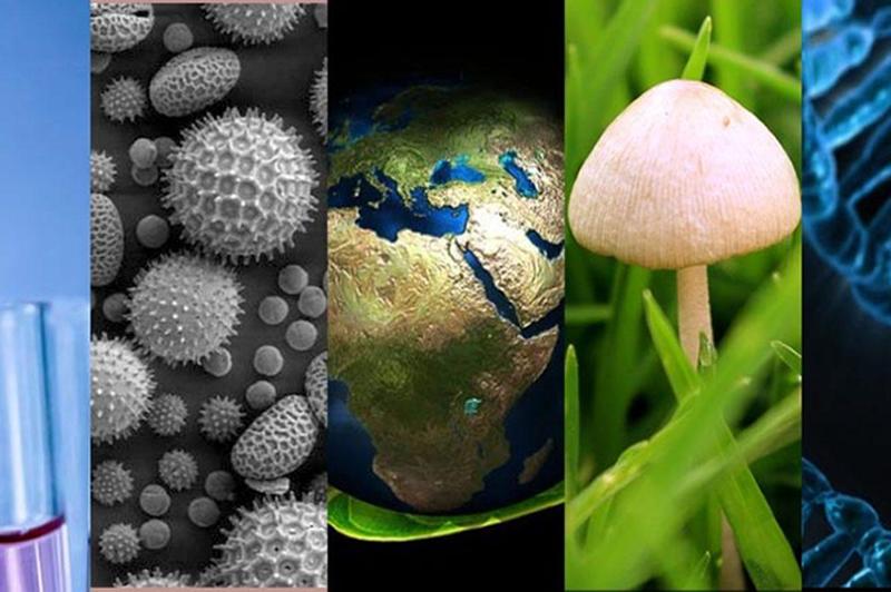 Ciencias Naturales Preicfes